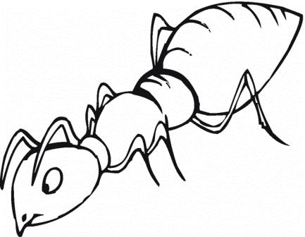 ant-is-smelling-coloring-page
